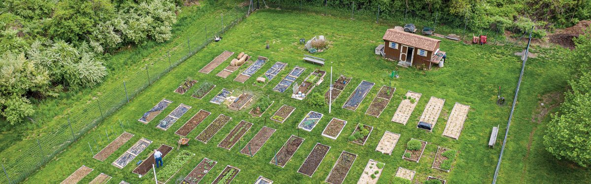 Aerial photo of the Harvester's community garden